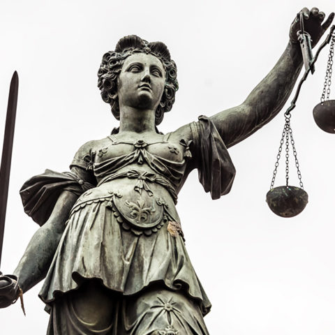 Rule of Law – A guide for politicians